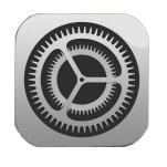 icon einstellungen