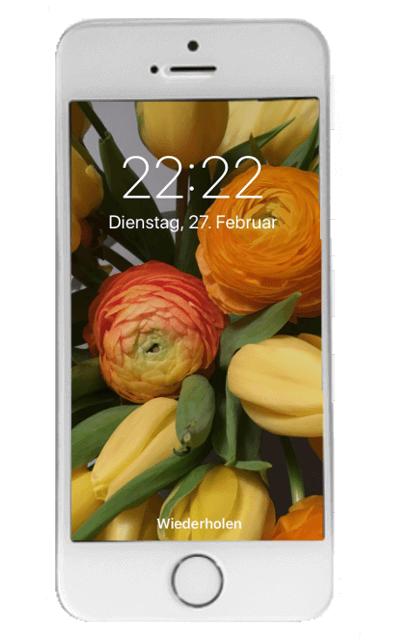 iPhone Hintergrundbild ändern